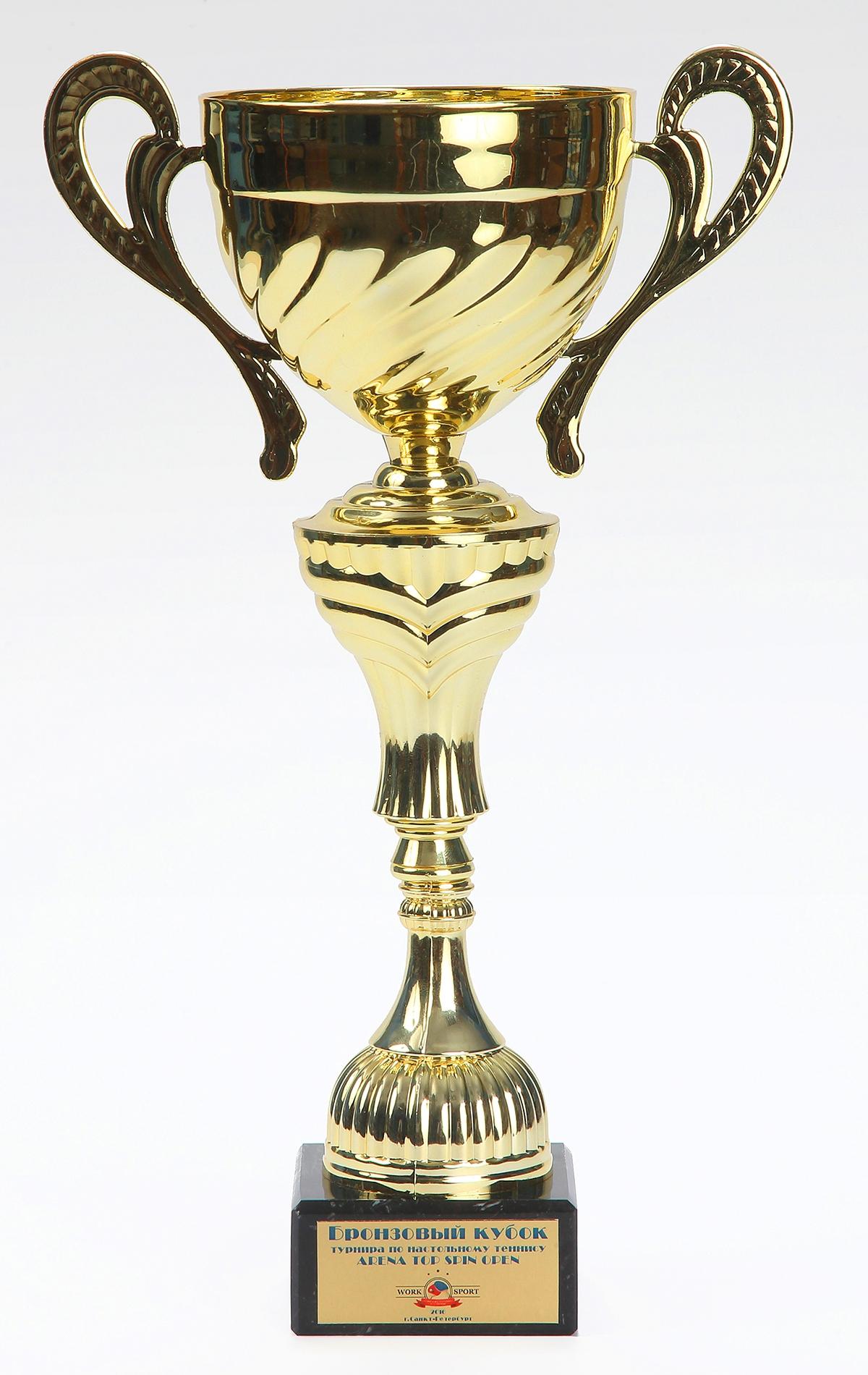 Бронзовый Кубок турнира